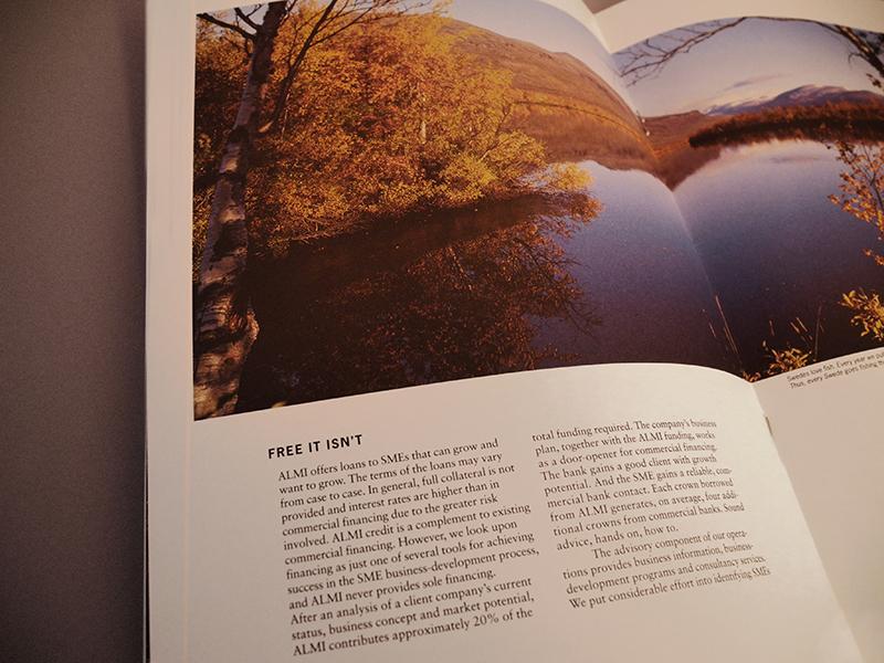Almi Annual report